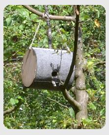 vobu vogelschutzbund deutschland stiftung zum artenschutz und zur st rkung der heimischen. Black Bedroom Furniture Sets. Home Design Ideas